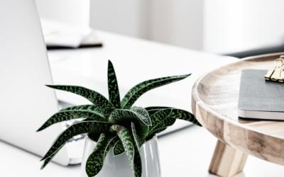 30 ideaa yrityksen some-kanaviin